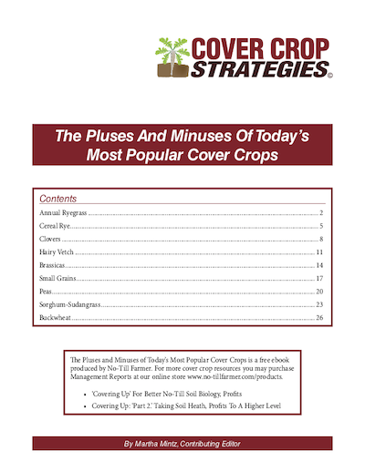 Pluses and Minuses of Cover Crops