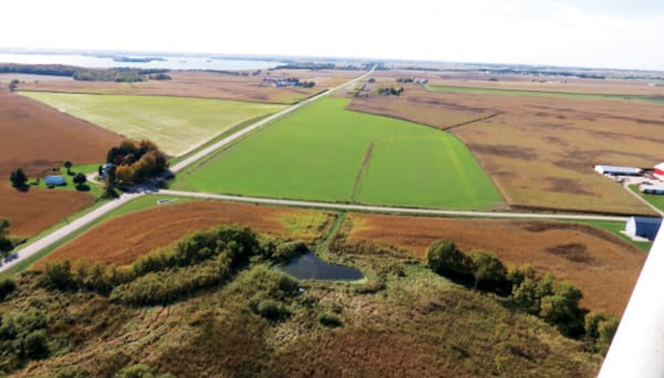 Example of successful aerial seeding of cover crops