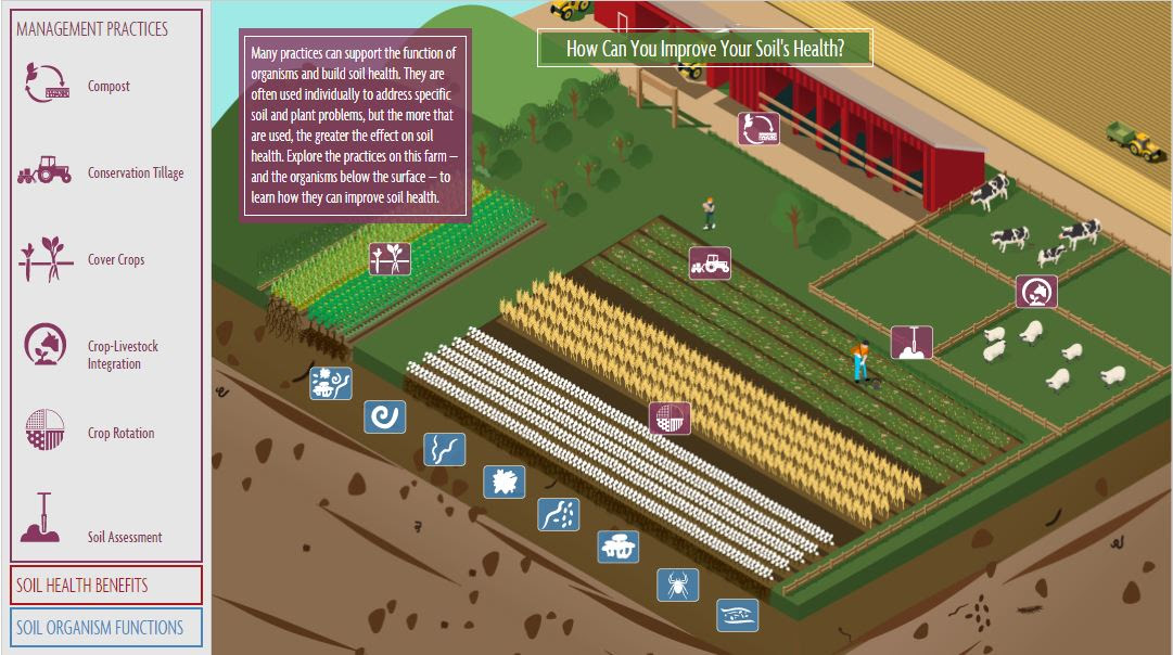 SARE Soil Health Graphic