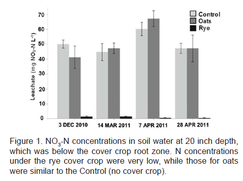 NO3-N concentrations in soil water at 20 inch depth, which was below the cover crop root zone.